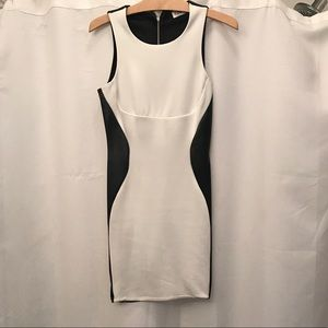 Tobi Black and White Minidress